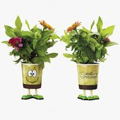 Grow Cup with  Eco Guy Design Cup