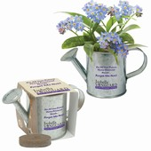 Mini Watering Can Blossom Kits